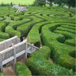 Maze_Small.jpg